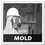 Mold Courses